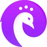 Piqo Design avatar image