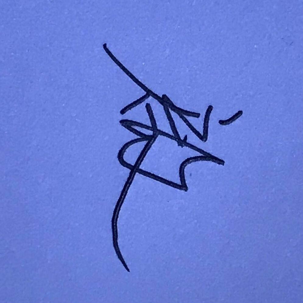 Ant avatar image
