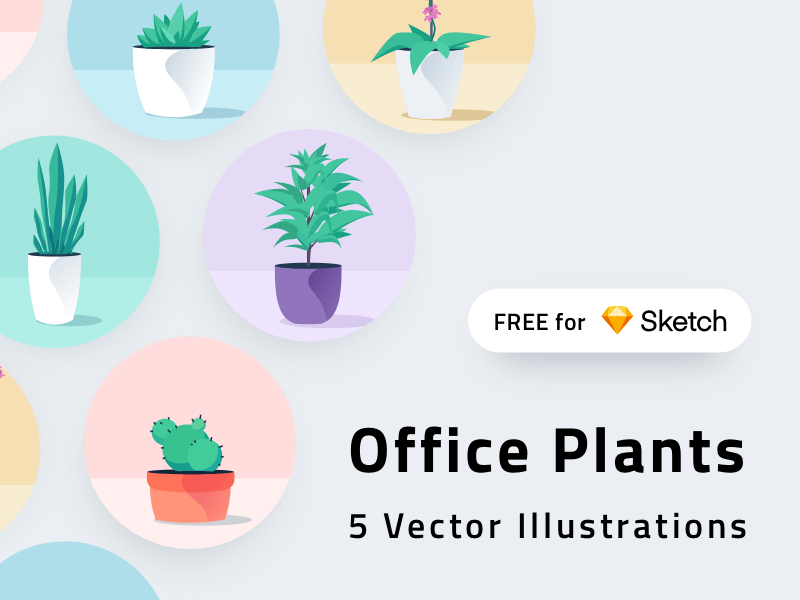 Office Plants Illustrations cover image